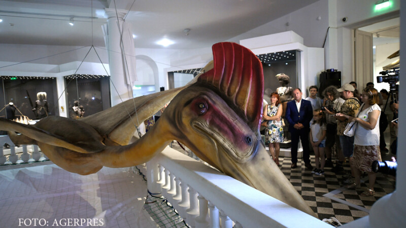 """Cel mai mare dinozaur zburator din lume, reconstituit la Antipa. Copiii s-au speriat de el: """"Ma mut in alta tara"""