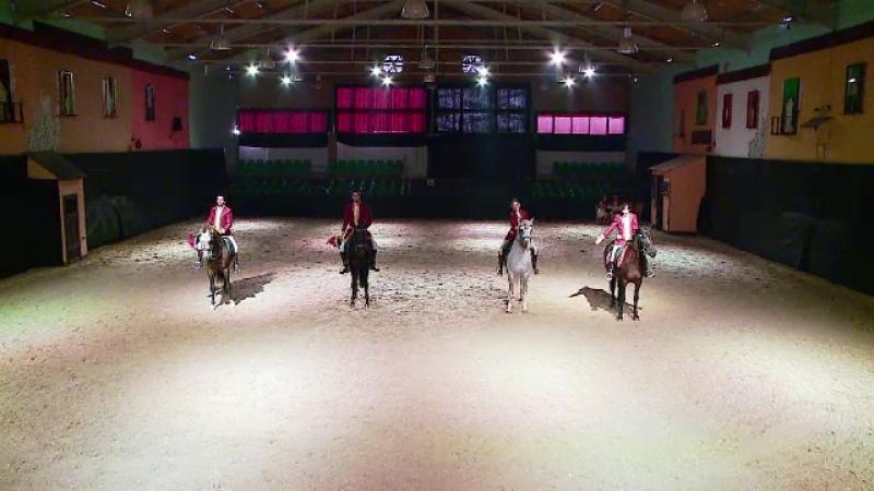 Pasionati de echitatie, 4 tineri din Australia, Spania si Franta fac spectacol in tara noastra. Caii sunt dresati la Turda