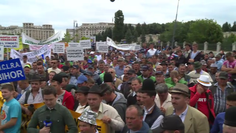 Protest pe muzica de fanfara la Parlament. Fermierii au cerut alesilor sa modifice legi si au impartit telemea cu jandarmii