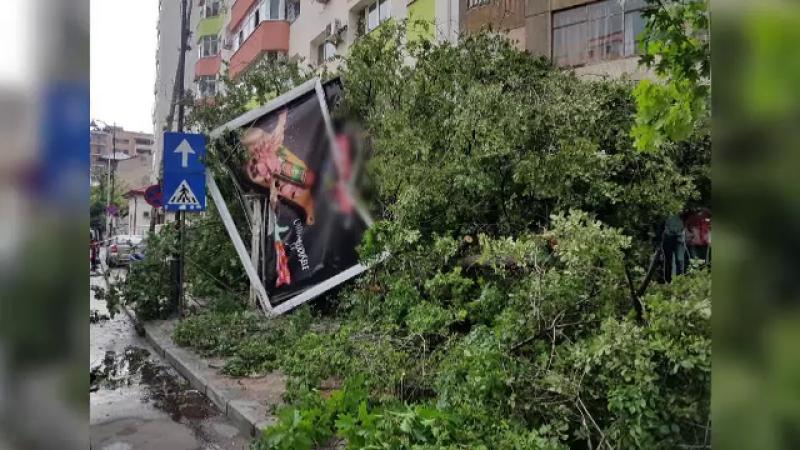 Zeci de copaci au fost pusi la pamant in Capitala, dupa o furtuna. La Buftea, o femeie a fost ranita