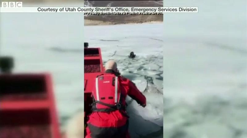 Un catelus a ramas captiv mai multe zile pe un lac inghetat din Utah. Cum a fost salvat animalul