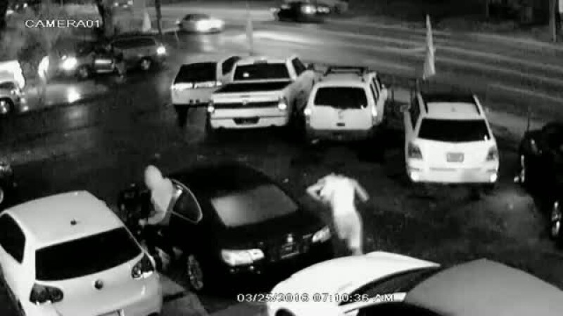 Opt masini furate din sediul unui dealer auto, intr-o singura seara. Ce au surprins camerele de supraveghere