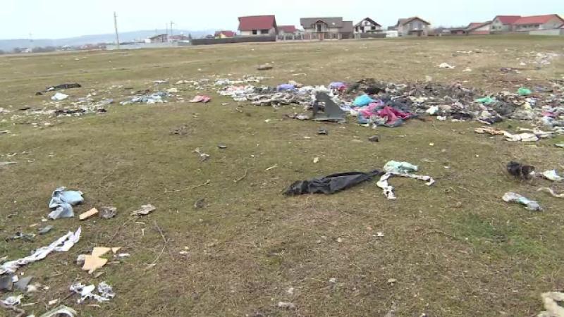 Tone de gunoaie aruncate la marginea orasului Tg. Jiu. De ce se tem locuitorii din zona