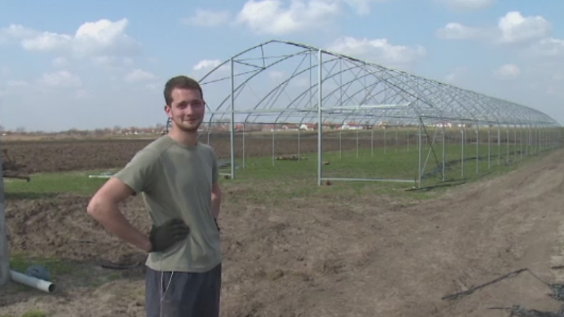 700 de tineri au obtinut de la UE pana la 50.000 de euro pentru a-si incepe afacerile in agricultura. Ce proiecte au depus
