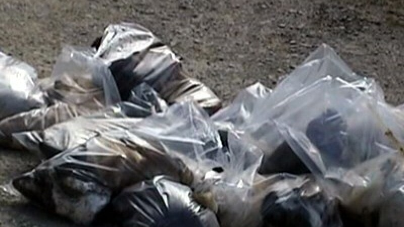 IMAGINI SOCANTE. Sute de caini ucisi la Botosani si pusi in saci de plastic