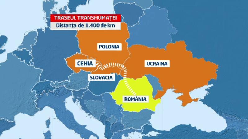 Calatoria istorica a doi ciobani romani. Vor strabate 1400 km pentru a reinvia un obicei de 300 ani