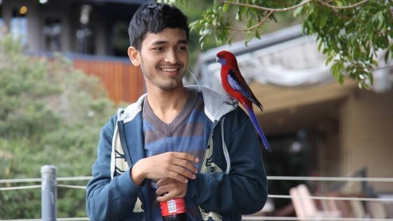 Curajul fenomenal al unui adolescent orfan l-a transformat in erou national, in Nepal. Cum a salvat vietile a 55 de copii