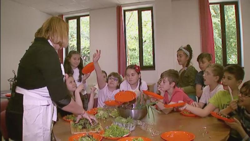 In Romania sunt copii care pana la 10 ani n-au gustat o ridiche. Expertii cer un nou obiect de studiu obligatoriu in scoli