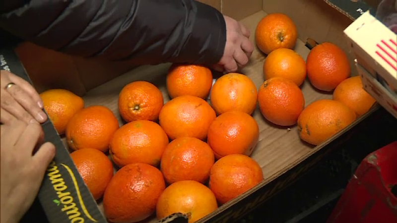 portocale, citrice, tratate, substanta periculoasa