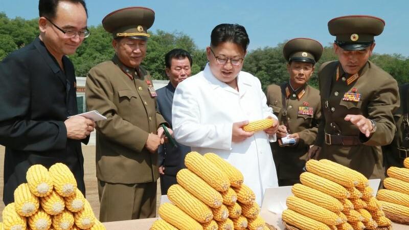 Oficial nord coreean care a dezertat:
