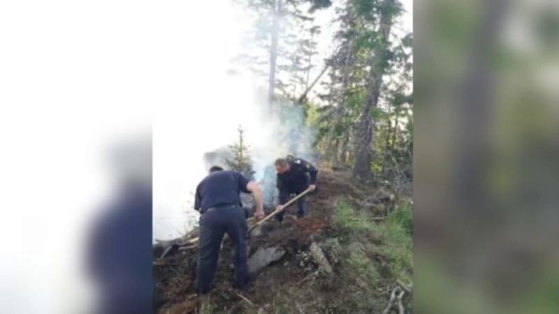 Incendiul care a cuprins pădurea din Bistrița s-a extins pe 8 hectare