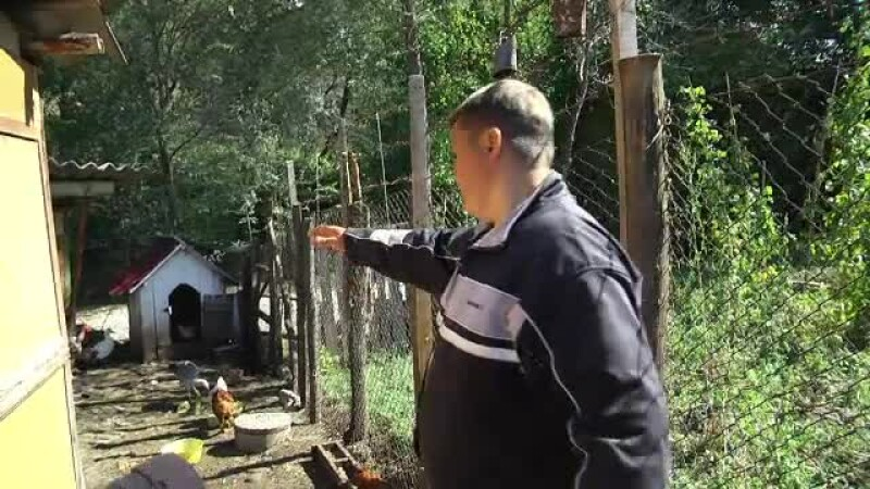 oameni atacati de urs la Pucioasa