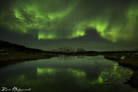 Iurie Belegurschi aurora polara