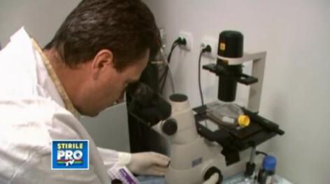 microscop, laborator, telocite