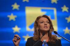 PNL isi face planuri pentru intrarea la guvernare. Orban: Interesul partidului ar fi sa-l lase pe Ponta sa-si franga gatul