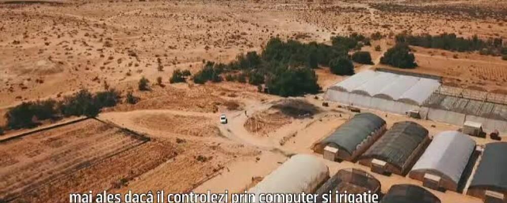 rti desert israel