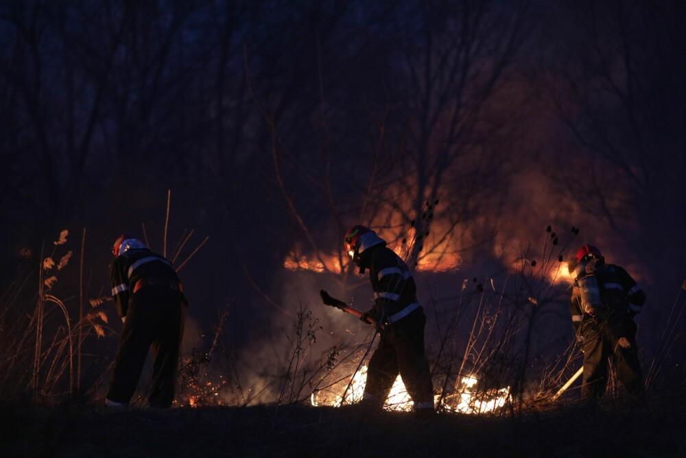 Delta Văcărești a fost cuprinsă de flăcări