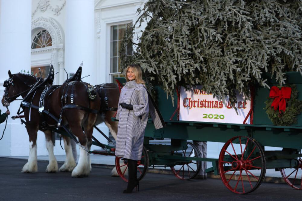 Bradul de Crăciun a ajuns la Casa Albă