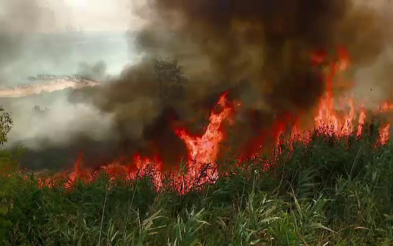 arzătoare cu bombă de incendiu pierde grăsime în zece zile