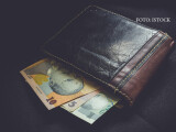 portofel cu lei