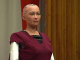 Robotul Sophia, așteptat la București de 3000 de oameni. Biletele, vândute integral