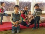 refugiat, germania, siria, sotii, poligamie,