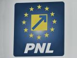 pnl-va-ataca-la-ccr-legea-privind-rezervele-de-aur-ar-putea-deveni-periculos-pentru-tara