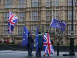 Fiul unui parlamentar britanic, supranumit `Brexit` de către părinți