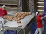 Produsele congelate importate se vând `ca pâinea caldă`, în timp ce pe fabrici se pun lacătele