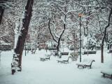Zăpadă