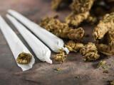 marijuana-gratis-pentru-cei-care-se-vaccineaza-unde-va-fi-aplicat-acest-plan