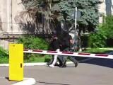 Bărbatul care a împușcat un altul pentru o datorie de 2.000 de euro, prins în Capitală