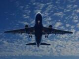 alerta-cu-bomba-la-bordul-unui-avion-ce-venea-din-egipt-aeronava-cu-250-de-pasageri-a-aterizat-