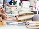 Care a fost cea mai furată carte din librăriile Humanitas în 2017