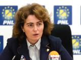 Senator PNL: Reprezentanții Comisiei de la Veneția, îngrijorați din cauza modificărilor legislative