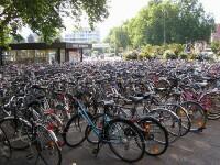Turismul pe bicicleta! Afacere profitabila pe timp de criza!