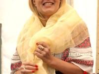 Elena Udrea: Legea tichetelor de vacanta este functionala