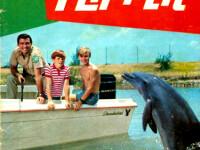 De ce s-a sinucis Flipper, celebrul delfin din serialul TV omonim?