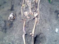 Schelet datand din perioada antica descoperit in centrul Constantei