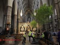 Nebunia de la nunta regala. Padurea din interiorul bisericii. FOTO