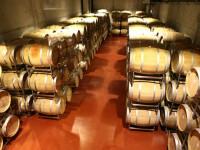 Raiul degustatorilor de vinuri este in Alba. Fiecare casa are vinul ei, crama si etichete cu blazon