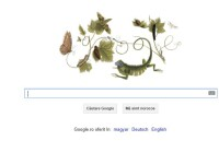 MARIA SIBYLLA MERIAN, sarbatorita de Google printr-un Doodle