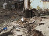 Apa trece, dar raman urmari grave.Gospodarii intregi din Bihor au fost distruse in urma inundatiilor