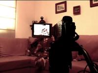 Elevii care s-au filmat intretinand relatii intime, cercetati pentru pornografie infantila