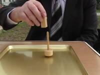 Inventii romanesti premiate la Geneva: curcubeul din gradina si titirezul magnetic