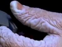 Cum arata mainile unui scafandru dupa ce a stat 10 zile sub apa
