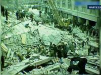 Cainii salvatori, solutia autoritatilor in cazul unui cutremur major. Specialistii estimeaza mii de victime