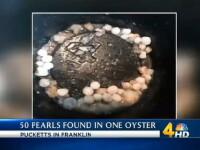 Surpriza de proportii pentru clienta unui restaurant, care a gasit 50 de perle intr-o stridie. Cine a intrat in posesia lor