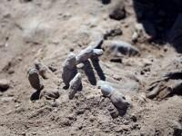 Cadavrele a 1.700 de soldati irakieni ucisi de Statul Islamic, in 12 gropi comune descoperite la Tikrit. VIDEO
