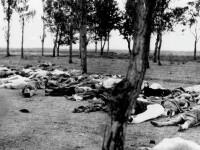 100 de ani de la genocidul armean. Germania a recunoscut pentru prima data masacrele comise de catre turcii otomani